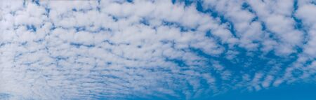 Autumn Sky (Scale cloud) Panorama Synthesis 스톡 콘텐츠