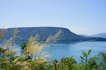 susuki grass.Seto Inland Sea.Yashima(Takamatsu City, Kagawa Prefecture)