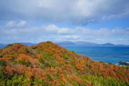 Late autumn mountain surface and Seto Inland Sea(Taken towards Shodoshima from Sanuki City, Kagawa Prefecture)