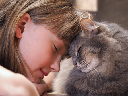 friendships: Cat and girl nose to nose. Tenderness, love, friendship. Sweet and loving picture of friendship and child cat Stock Photo
