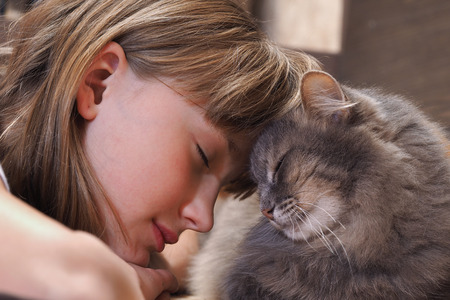 tenderness: Cat and girl nose to nose. Tenderness, love, friendship. Sweet and loving picture of friendship and child cat Stock Photo