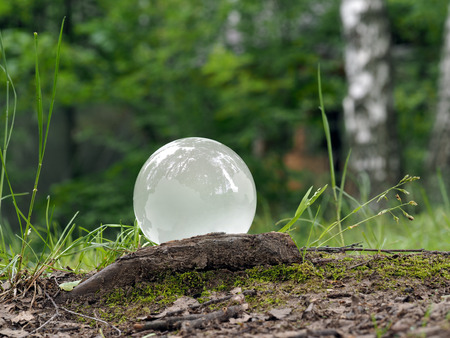 matt: White, matt ball in the woods on the grass. Glass - a material, concepts and themes, concepts, environment, nature, ecology, drought