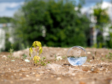 vacant lot: Dry, germ wilted and transparent ball in a vacant lot. The bowl is reflected the blue sky. The concept of ecology, drought, environmental protection in the construction of houses Stock Photo