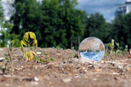 vacant lot: Dry, germ wilted and transparent ball in a vacant lot. In the bowl of a building reflects the city, blue sky. The concept of urban ecology, drought, environmental protection in the construction of houses
