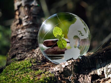 Boule transparente dans la forêt verte. Dans la sphère réfléchie cairn, feuilles de menthe verte, l'eau. Verre - un matériau, des concepts et des thèmes, zen, la méditation, l'environnement, l'écologie, la paix, Banque d'images - 61252834