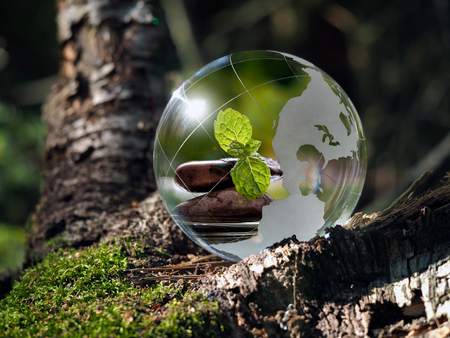 glass sphere: Transparent ball in the green forest. In the sphere reflected cairn, green mint leaves, water. Glass - a material, concepts and themes, zen, meditation, environment, ecology, peace,