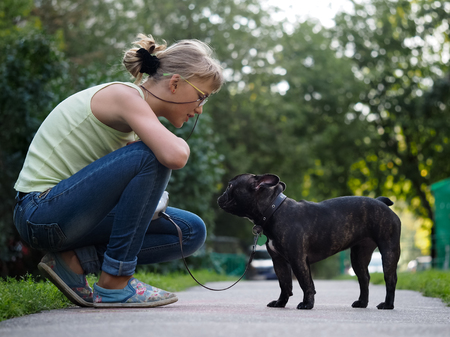She communicates with the dog while walking. Street of the city, summer. French Bulldog in black with a collar and leash