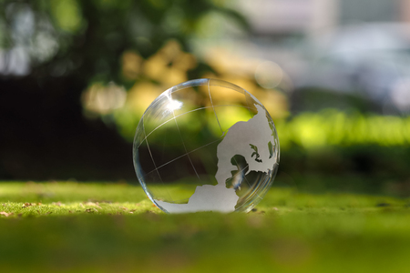 Transparent sphere. Green moss. The concept of ecology, environmental protection
