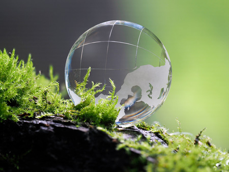 LargLarge clear glass ball lying on the moss. Concept - lightness, transparency of relations, cleanliness, ecologye clear glass ball lying on the moss. Concept - lightness, transparency of relations, cleanliness, ecology