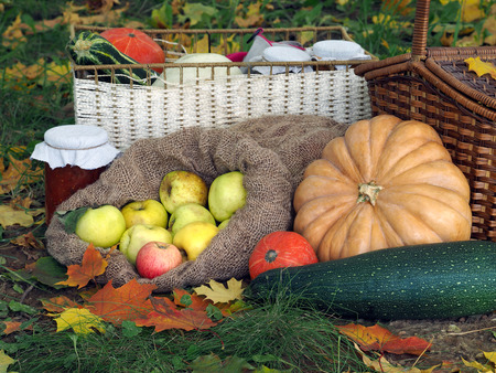 blanks: The autumn harvest from the garden on a glade with autumn leaves. Shopping, pumpkins and squash, jam in a jar, wicker basket