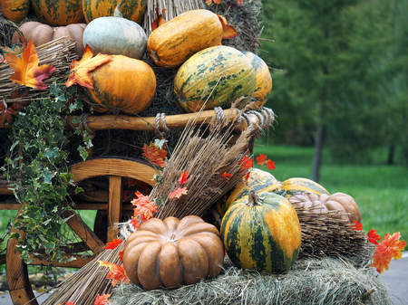 Pumpkins and sheaves of hay in a rustic cart. Concept - fall, farm, harvest festival