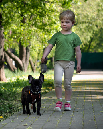 Proud little girl walking with a dog in the park. Happiness child. A dog on a leash. Purebred dog, french bulldog. The child bought the dog Stock Photo