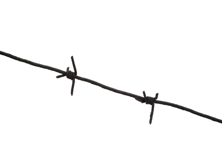 The iron thorn. Fence metal wire. White background