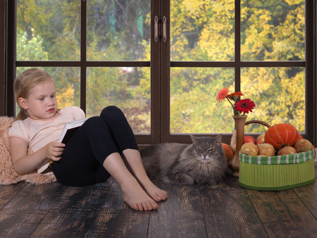small child with a book by the window. The interior of the home. The cat is lying, autumn vegetables, pumpkin.