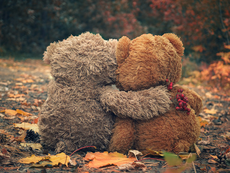 Two Teddy bear hugging each other and looking at the autumn forest