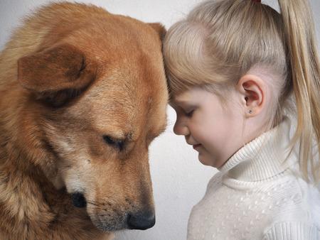 huge dog and little girl. Emotional portrait. Friendship a large dog and child