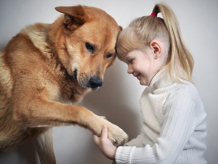 Meisje houdt de enorme poot van de hond in handen. Vriendschap hond en kind