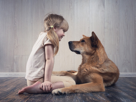 A wonderful little girl and a huge dog communicate with each other. The dog is terrible, but kind. An animal loves a child. Reklamní fotografie - 96147348
