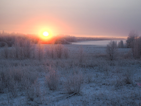 Winter landscape. Field, sunset. The grass and the trees are frozen. Beauty of nature in winter Imagens