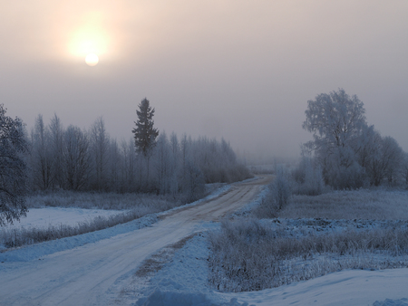 Rural road. Winter landscape. Trees in snow, snowdrifts Imagens
