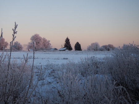 Winter rural landscape. Roofs of village houses, trees, field. Banque d'images - 115398870