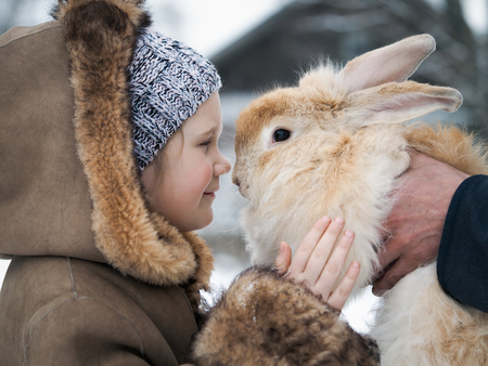 Acquaintance of a little girl and a huge rabbit.