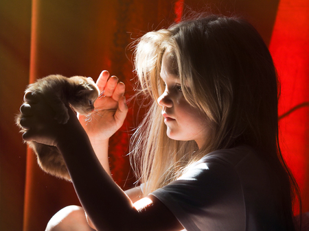 Little girl with a kitten in the morning sun