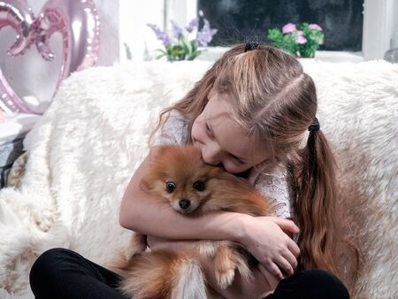 Portrait of a child with a dog in a home interior 스톡 콘텐츠