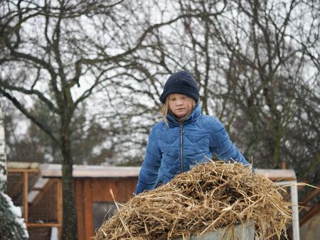 Sad child carries a cart of straw. The chores on the farm 스톡 콘텐츠