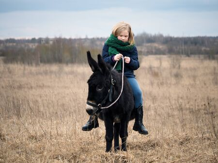 Donkey is the girl's favorite animal. A child with a donkey on a pasture