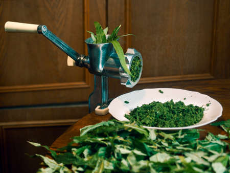 Green leaves are rolled through a meat grinder