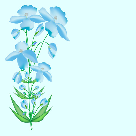 poppies: Blue poppies flower floral background blue nature Illustration