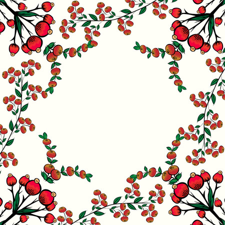 mountain ash: Rosehips currant mountain ash red berry natural vector background. Floral pattern and place for text