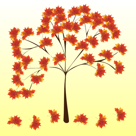 fall harvest: Autumn maple tree red leaves nature vector background Illustration