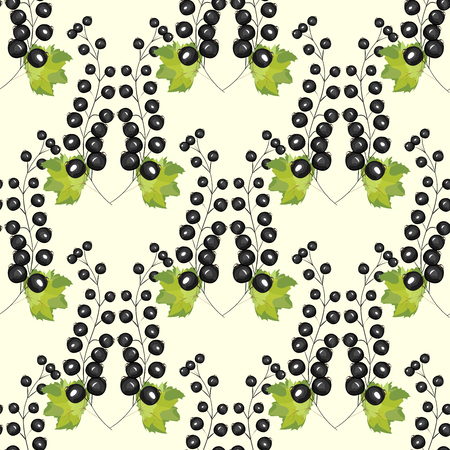 currant: Black currant berry seamless pattern vector background