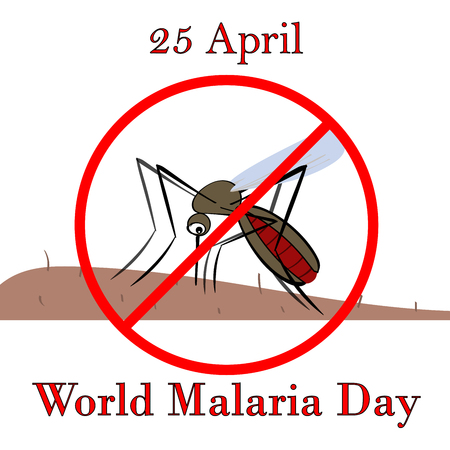 malaria: 25 April world malaria day. The mosquito drinks the blood vector illustration. Vector control malaria