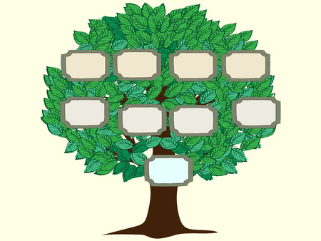 Family tree one person vector background. Green tree with frames for photos or text. Vector illustration of a pedigree person