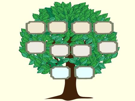 Stamboom paar vector achtergrond. Groene boom met frames voor foto's of tekst. Vector illustratie van een stamboom persoon