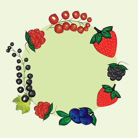 currants: Vector set of hand drawn berries for the label. Currants, raspberries, strawberries, blueberries, blackberries for menu and recipe design. Illustration
