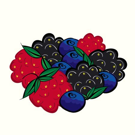 blackberries: Ripe forest berries raspberries blueberries blackberries. Juicy delicious dessert tea. Illustration
