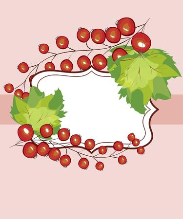 Vector Hand Etikett Johannisbeeren gezeichnet. Rote Johannisbeere Beeren Menü Kreisentwurf Rezept Ort Text Inschrift Rahmen. Vektorgrafik