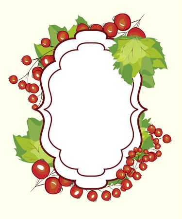 red currant: Vector hand drawn label berry currants. Red currant berries menu circle design recipe place text inscription frame.