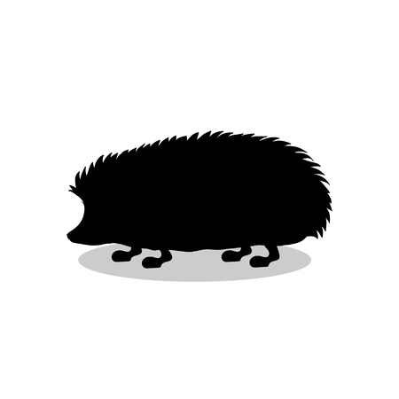 Hedgehog wildlife black silhouette animal