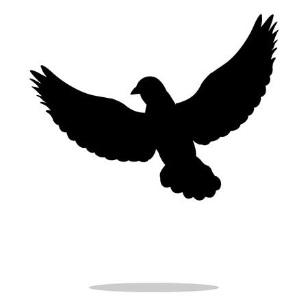 Pigeon bird black silhouette animal