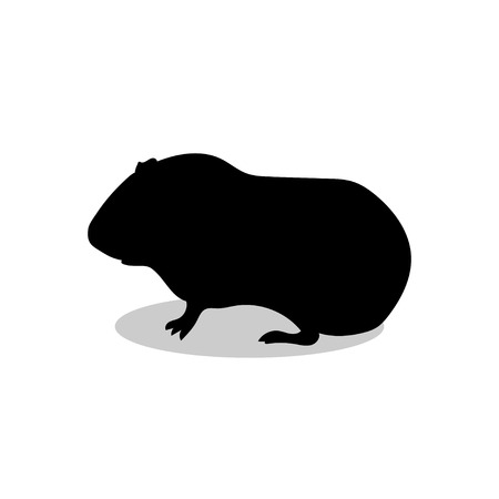 Guinea pig pet rodent black silhouette animal
