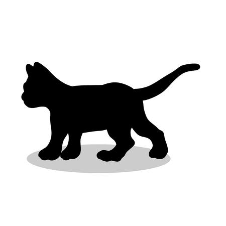 Kitten cat pet black silhouette animal