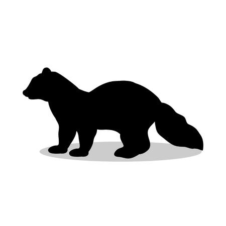 sable: Sable marten mink mammal black silhouette animal
