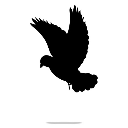 Pigeon bird black silhouette animal Banque d'images - 77968631