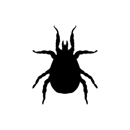 Mite parasite black silhouette animal