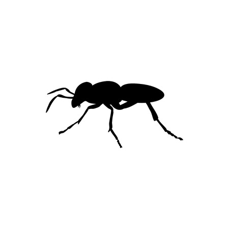Ant insect black silhouette animal